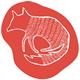Logo raposu roxu